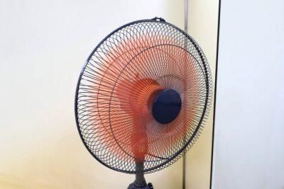 業務用の大型扇風機で乾燥させます。1万円しないで手に入ります。